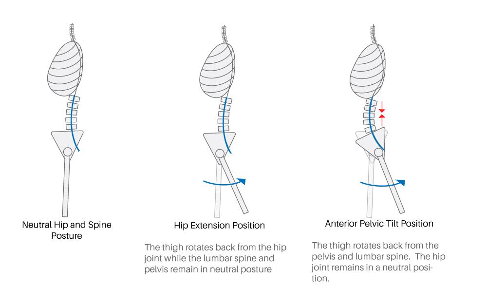 hip extension mobility_hip extension vs APT