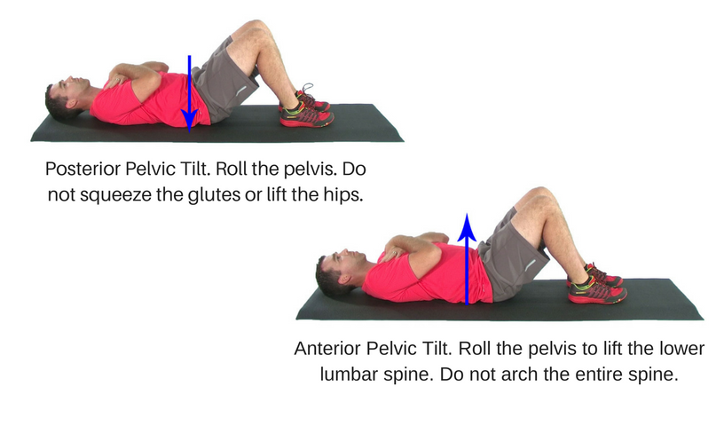The Best Exercises For Acute Low Back Pain