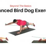 Advanced Bird Dog Exercises