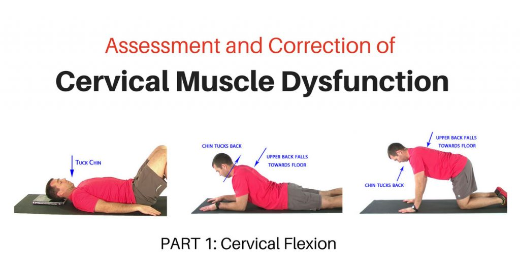 Deep Neck Flexor Exercises