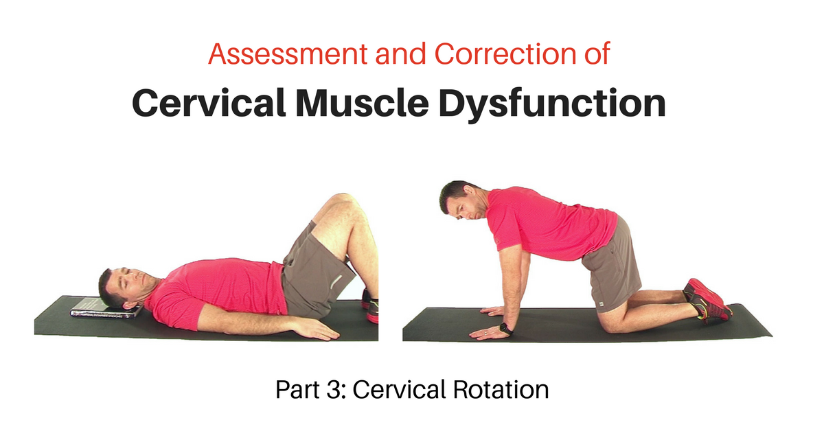 Cervical Rotation Exercise Progressions - My Rehab Connection