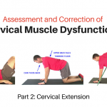 Exercise Progressions for the Cervical Extensors