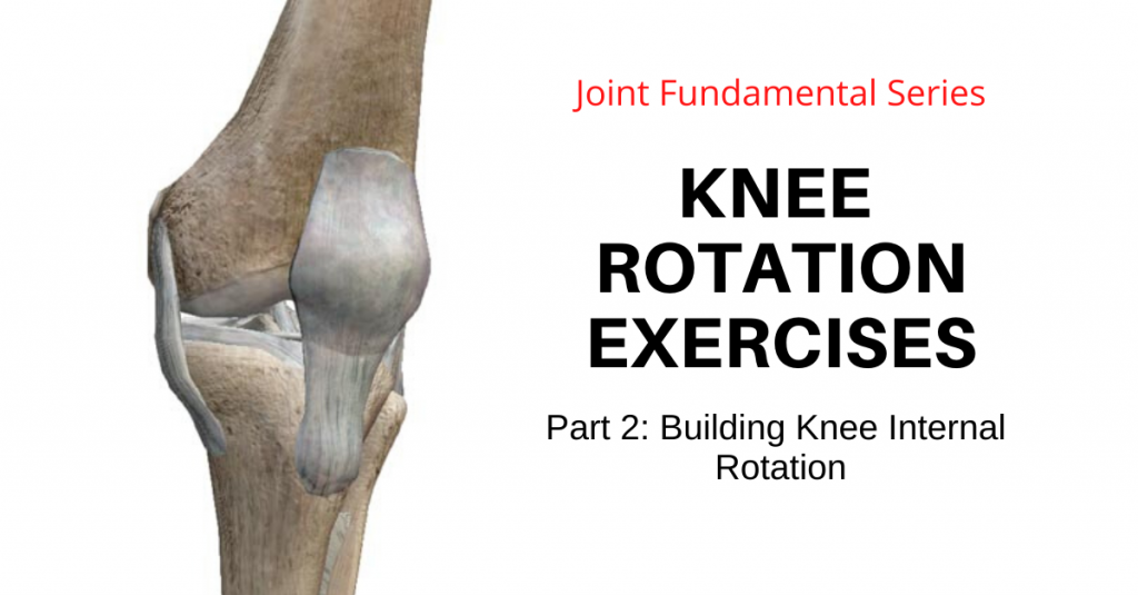 Knee Rotation Exercises