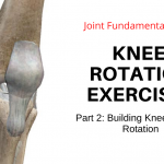 Knee Rotation Exercises – Part 2: Knee Internal Rotation